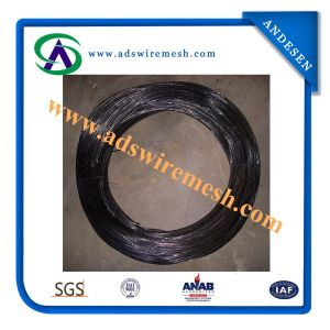 Oil Spraying Black Iron Wire (ADS-BAW-03) pictures & photos
