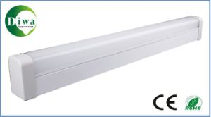 LED Flat Tube with CE Approved, Dw-LED-T8dfx pictures & photos