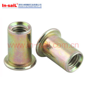 China Manufactory Truss Head Rivet Nuts Zinc Plated pictures & photos