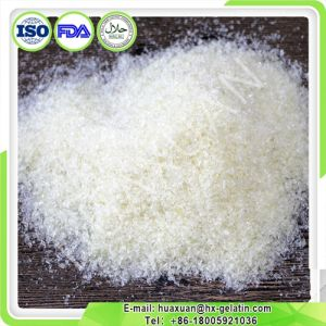 Hot Sale Best Quality Gelatin with Different Mesh pictures & photos