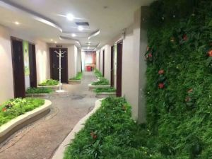 High Quality Artificial Plants and Flowers of Green Wall Gu-Wall46549438840660 pictures & photos