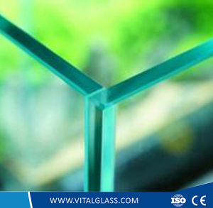 3.2mm Flat Tempered/Toughened /Figured/Patterned/Laminated/Reflective/Low Iron/Acid Etched Glass for Refrigerator Door pictures & photos