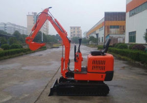 Ce Approved 1000kg Yrx10 Mini Excavator for Sale pictures & photos