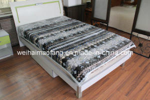 Raschel Mink Acrylic Blanket (MQ-LB112) pictures & photos