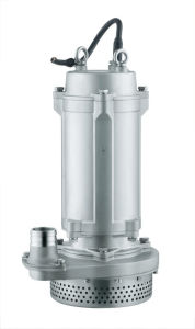 Qdx High Quality Stainless Steel Submersible Pump (QX12-60-4) pictures & photos