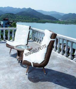 High Quality Rattan Lounge (CNS-2270)