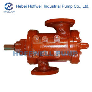 CE Approved 3G Heavy Oil Positive Displacement Pump pictures & photos