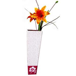 Vase & Gift Packing (ZD-1009)