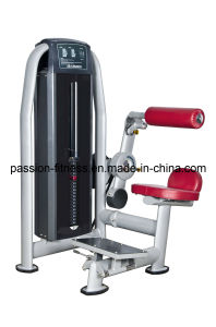 Ab Crunch Commercial Fitness/Gym Equipment with SGS/CE