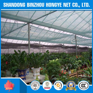 HDPE Garden Green Sun Shade Net/ Netting/ Cloth/HDPE Plastic Agriculture Green Sun Shade Net pictures & photos