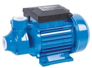 Electric Vortex Water Pump (PM)