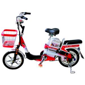 Electric Bike (TDR163-9KZ)