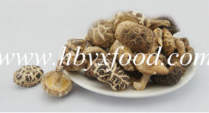 2016 Export Dehydrated Shiitake Mushroom Snack Food pictures & photos