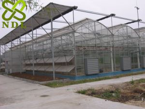 Hollow Glass Rose Planting Greenhouse pictures & photos
