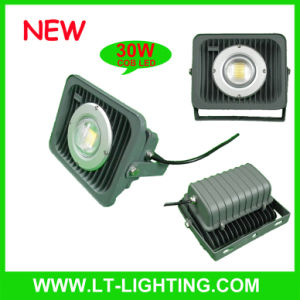 30W COB LED Floodlight (LT-FL004-30)