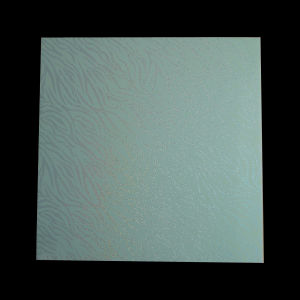 PVC Board (6009) pictures & photos