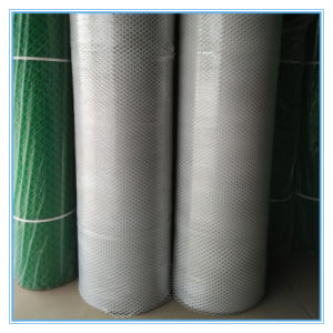 White Plastic Mesh Plate/ Mattes Net pictures & photos
