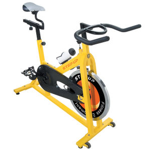 Exercise Bike (811)