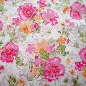 Jacquard Fabric (HFH110527-10)