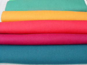 Polar Fleece Fabric in Solids, Fleece Fabric, Dyed Fleece Fabric pictures & photos