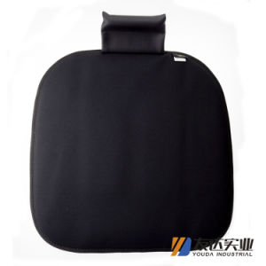 Car Seat Cover and Cushion (DP4649) pictures & photos