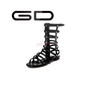 Ladies Gladiator Style Sexy Flat Custom Big Size Sandals Women pictures & photos