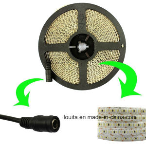 High Quality SMD3014 LED Strip Light 204LED/M pictures & photos