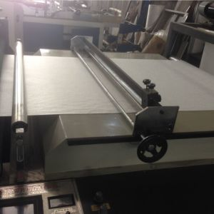 Automatic Non Woven Fabric Roll to Sheets Cross Cutting Machine (DC-HQ) pictures & photos