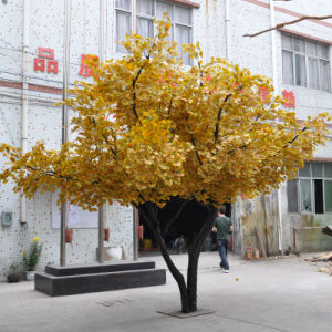 Custom Made Artificial Ginkgo Trees for Landscaping pictures & photos