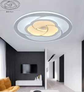 Flower Festival Acrylic LED Modern Ceiling Lights pictures & photos