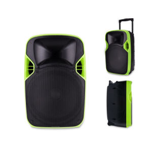 Competitive 12 Inches Plastic LED Projection Loudspeaker with Multi-Function pictures & photos