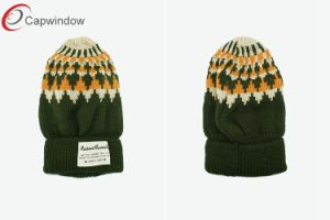 Capwindow New Design Knitted Beanie Hat Winter Hat pictures & photos