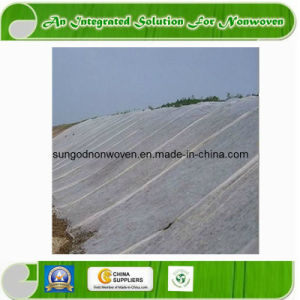 36m Extra Width Nonwoven Fabric for Agriculture Cover pictures & photos