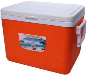 Promotion Plastic Ice Cooler Bag for Travel & Picnic pictures & photos