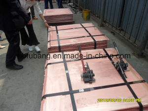 Pure Grade Copper Cathode Sellers From China pictures & photos