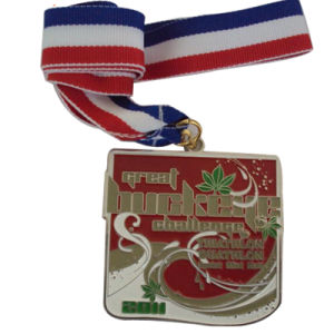 Big Pink Ribbon Volleyball Tournament Medal with Lanyards pictures & photos