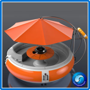 Gather Leisure Electric Fiberglass BBQ Donut Boat for Park pictures & photos