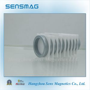 High Quality of Customized NdFeB Ring Magnet with Tight Tolerance pictures & photos