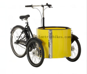 Tiny Cargo Bikes with 48V / 20 Ah LiFePO4. Battery (DT-040) pictures & photos