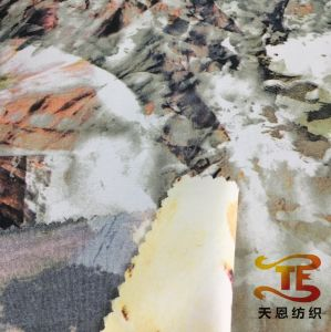228t Nylon Printed Taslan Fabric for Outdoor Wear Jackets Garment Fabric pictures & photos