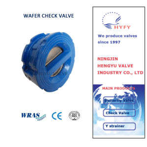 Cast Iron Wafer Check Valve pictures & photos