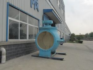 Top Side Semi Ball Valve pictures & photos