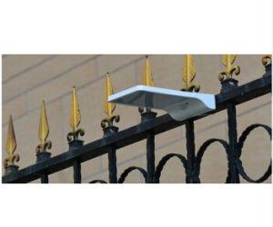 36PCS LED Solar LED The Lamp with Sensor Motion SL1-29-36W pictures & photos