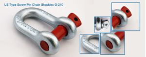Galvanized Screw Pin Us Type Steel Drop Forged D Shackle G210 pictures & photos