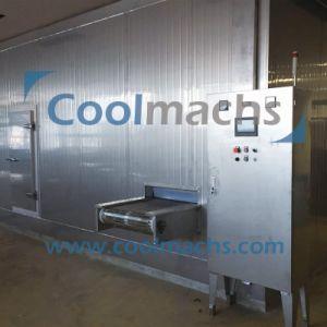 Spiral Freezer, Seafood IQF Quick Freezing Machine, Shrimp pictures & photos