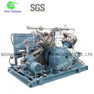Biogas Rare Gas Diaphragm Compressor pictures & photos