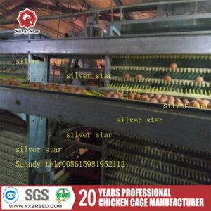 Poultry Farm Machine Chicken Bird Cage with Automatic Feeding System pictures & photos