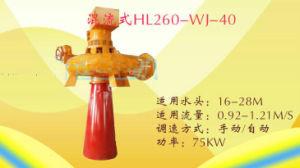 75kw Francis Turbine Generator pictures & photos
