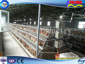 Steel Farming Poultry Chicken Prefab Shed/House pictures & photos