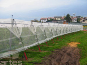 Magnetic Insect Net for Window/Magnetic Insect Netting/Anti Insect Net pictures & photos
